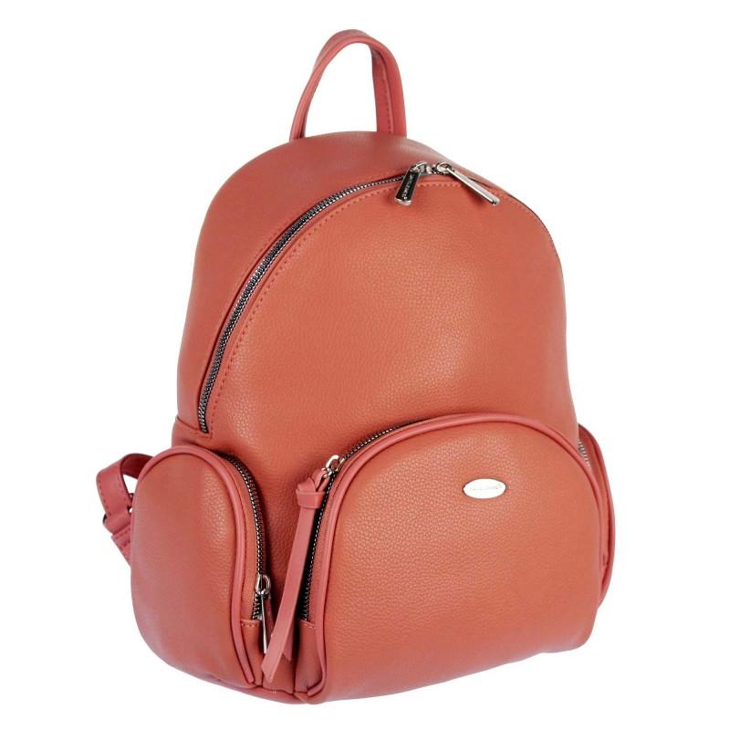 Backpack 6521-2 WL21 David Jones