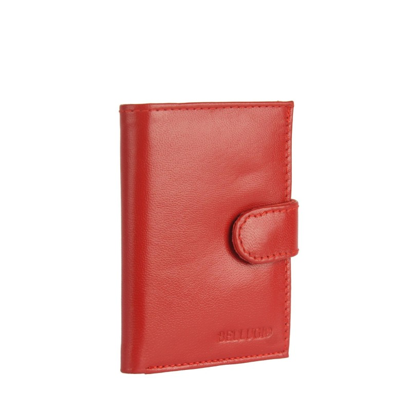 ZW-01-259A card case