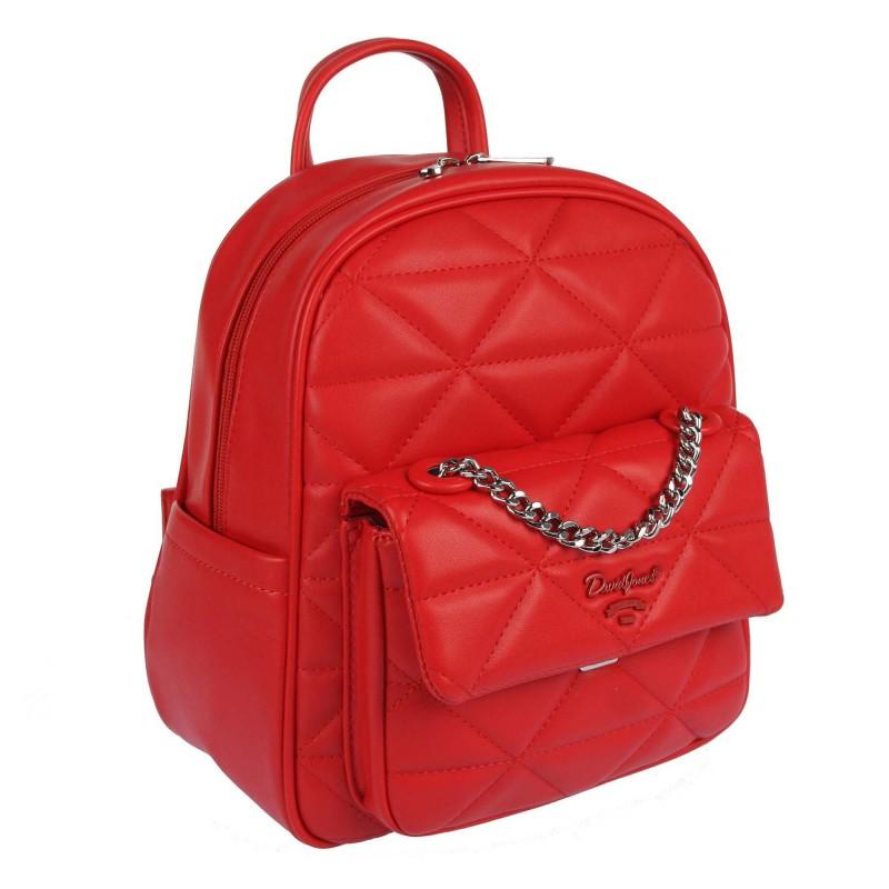 Backpack 6519-2 David Jones
